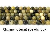 CHJ103 15 inches 10mm round honeybee jasper beads
