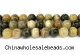 CHJ105 15 inches 14mm round honeybee jasper beads