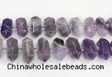 CNG8916 15.5 inches 10*25mm - 15*30mm faceted nuggets amethyst beads
