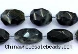CNG8983 15 inches 30*35mm - 40*50mm faceted nuggets labradorite beads