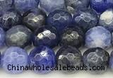 CSO910 15 inches 6mm faceted round sodalite beads wholesale