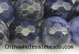CSO913 15 inches 12mm faceted round sodalite beads wholesale
