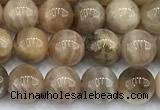 CSS840 15 inches 6mm round sunstone gemstone beads