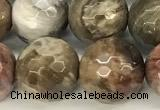 CWJ613 15 inches 10mm faceted round wooden jasper gemstone beads